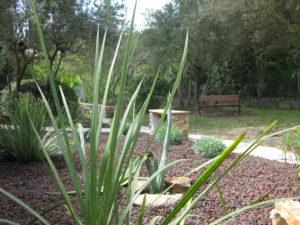 Jardin Lagon